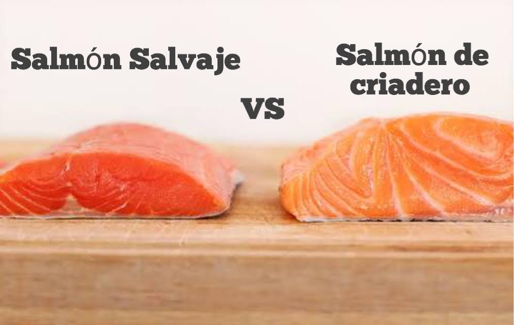 Image result for salmon salvaje
